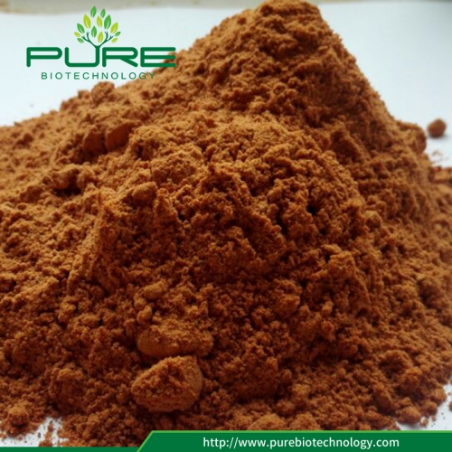 97% Polysaccharides Goji Berry Extract