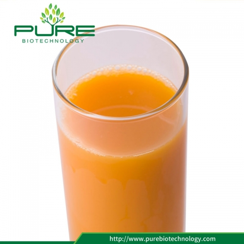Sea Buckthorn Juice Concentrate